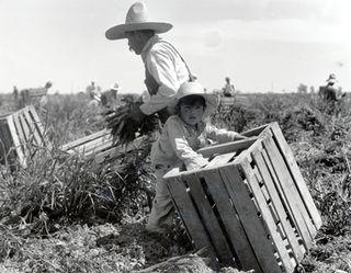 Fieldwork1935