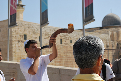 Another-shofar-1384