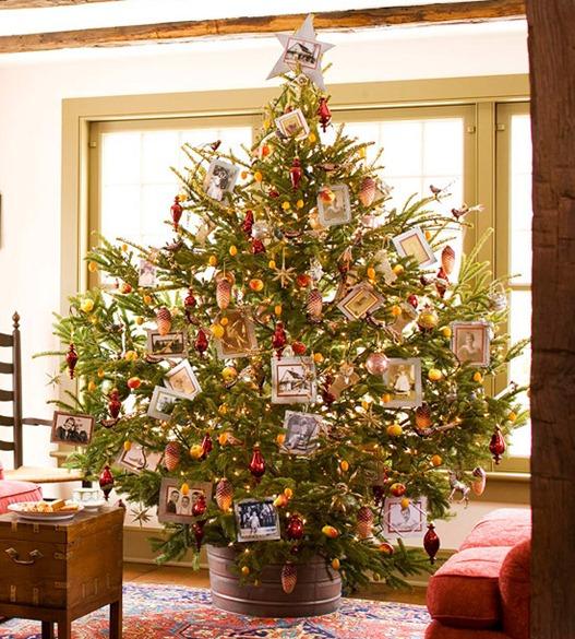 Family-photo-christmas-tree